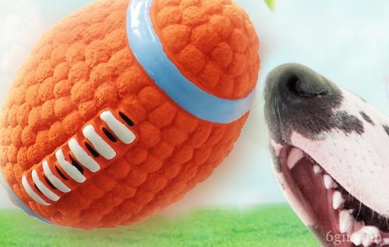 狗狗呕吐是怎么回事儿? 这几种原因你一定要知道!