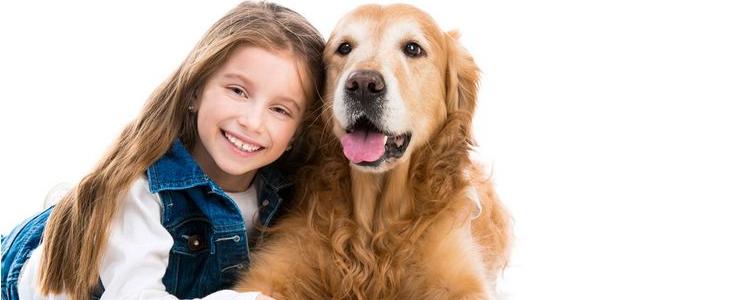 狗狗膈疝有什么症状 如何护理?