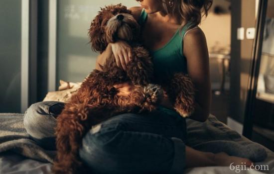 狗狗喜欢扑人怎么办 你要知道狗狗扑人的原因